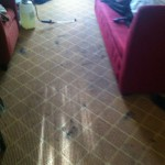 Tinley-Park-Carpet-Clean-before