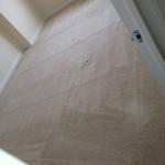 Tinley-Park-Carpet-Clean-room