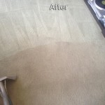 Tinley-Park-Carpet-Cleaning-Company