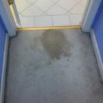 Tinley-Park-Vomit-1-before-carpet