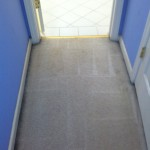 Tinley-Park-Vomit-2-after-carpet