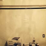 Tinley-Park-mold-damage